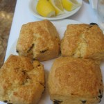 Rotunda Scones