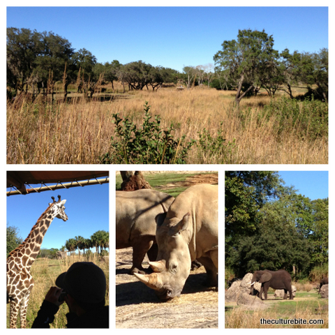 Kilimanjaro Safaris