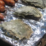 Tomales Bay BBQ Oysters